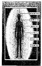 vaginalnie-regeneriruyushie-svechi